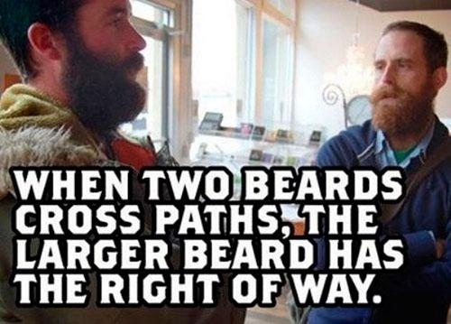 life4beard.ru парень с бородой правило бороды большая борода имеет преимущество