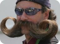 life4beard.ru Handlebar-Moustache1