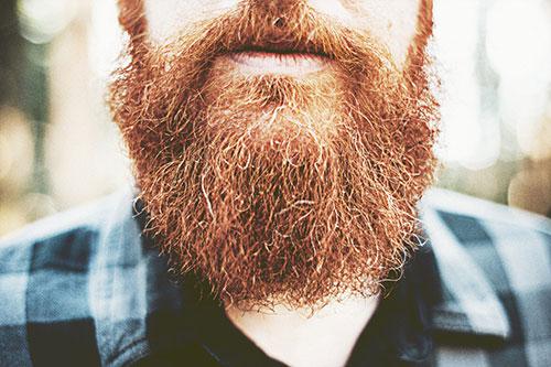 life4beard.ru борода-философия-бородач